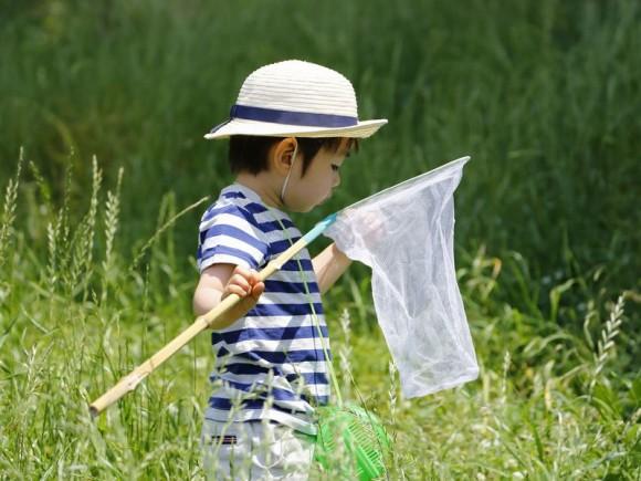 命を大切にする子に育てる、幼児期からの心の育み方
