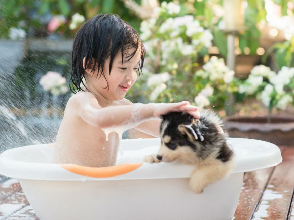 ペットにできて、親にできていないことがある!?「ペットを飼いたい!」の子どもの心理とは?